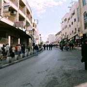 "Autonomia Palestyńska, I 2008 (15) • <a style=""font-size:0.8em;"" href=""http://www.flickr.com/photos/136764093@N08/22668681571/"" target=""_blank"">View on Flickr</a>"